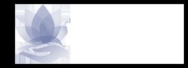 WebDana logo